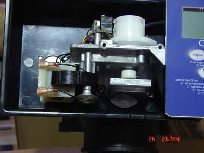 DSC000685.JPG